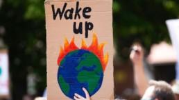 epidemie cambiamenti climatici