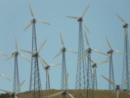 problemi eolico impatto ambientale salute